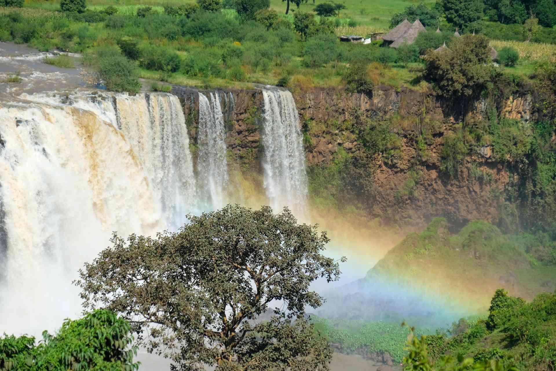 Blue Nile Falls, Ethiopia by Daniele Levis Pelusi