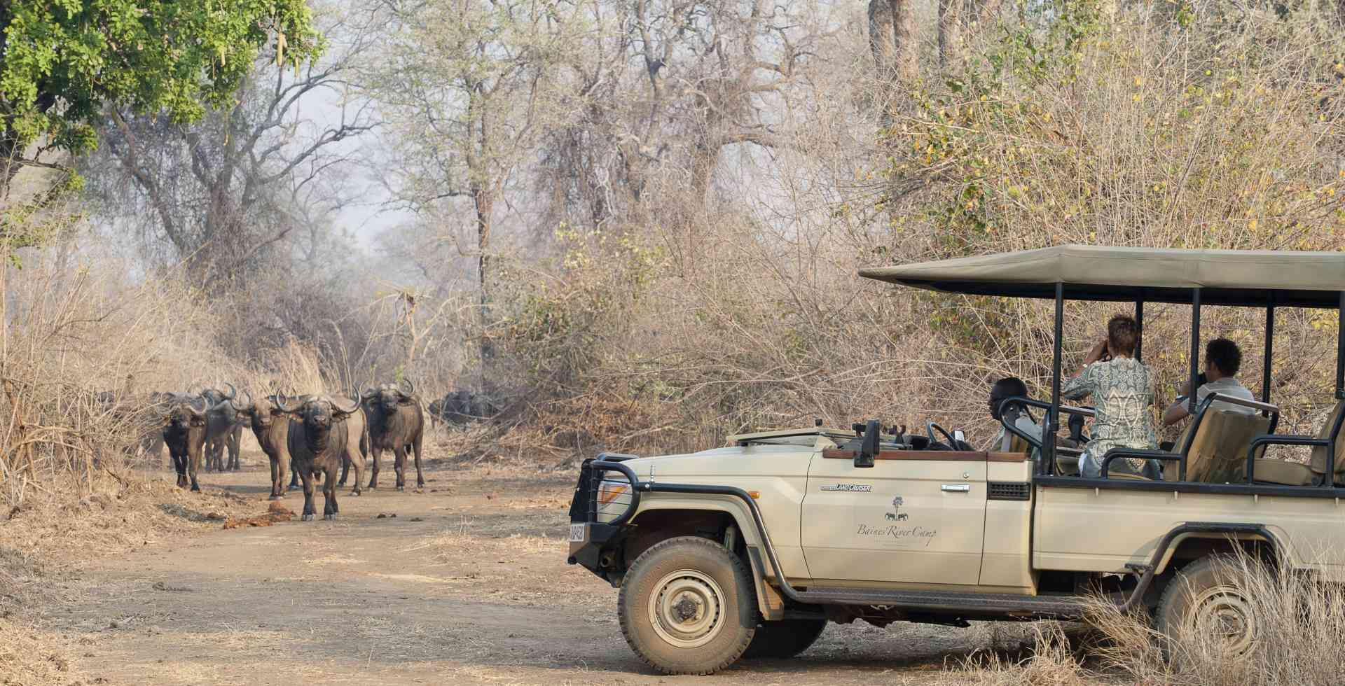 Lower Zambezi activities, Zambia