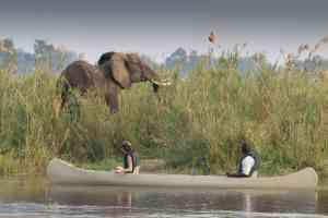 Lower Zambezi activities, Zambia