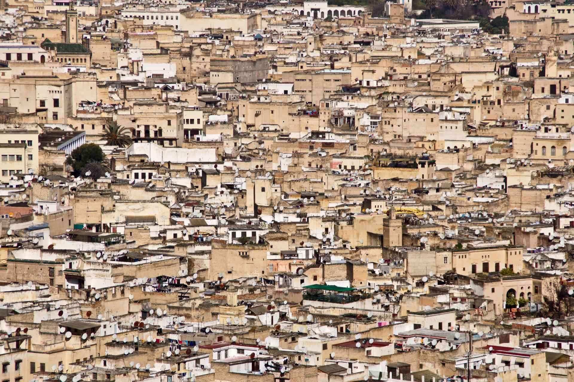 Fez, Morocco by Priscilla Aster