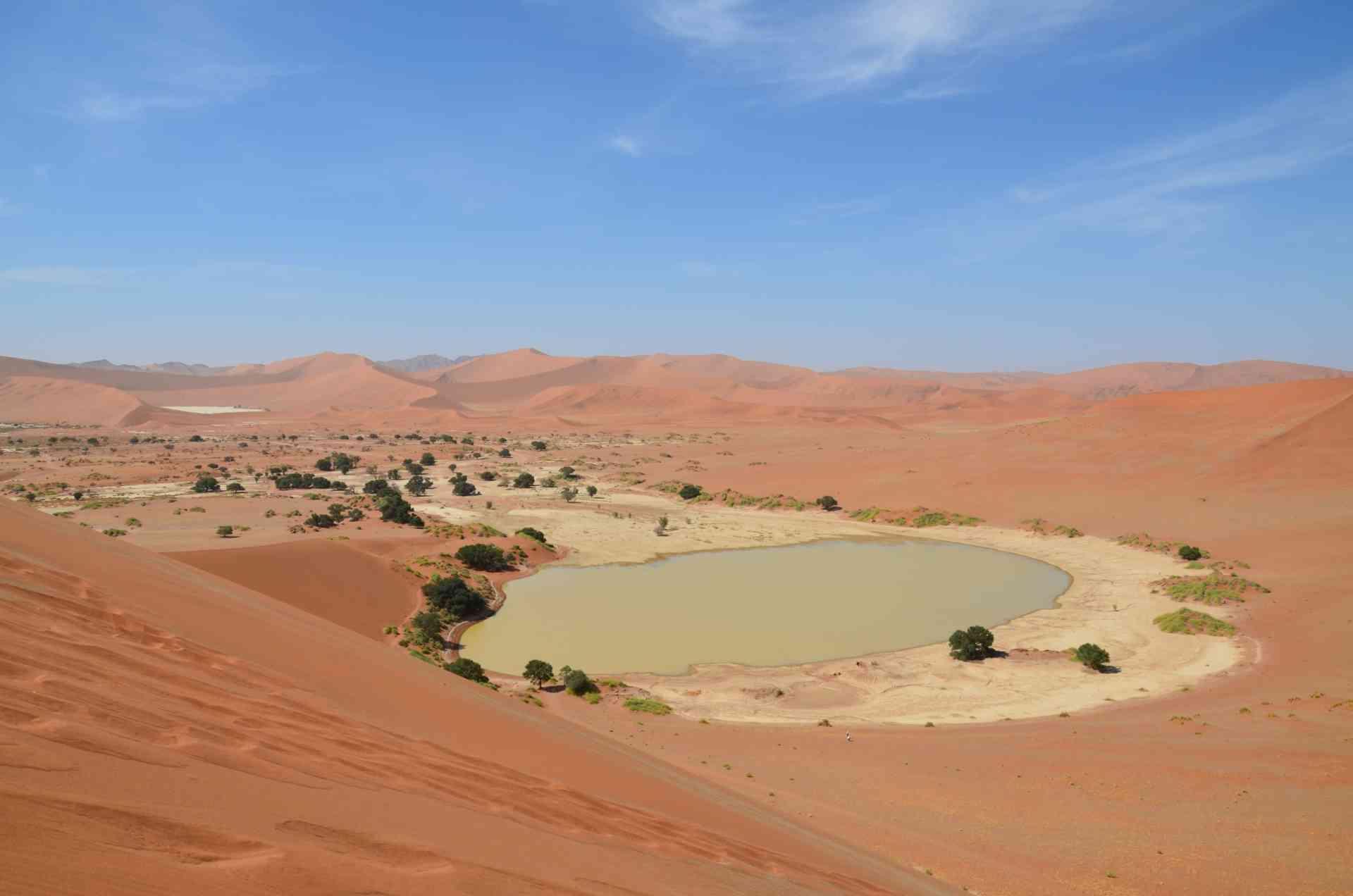 Sossusvlei, Namibia by Annelieke Huijgens