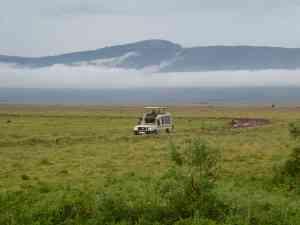 Safari in Ngorongoro Crater, Tanzania by Dennis Bunnik