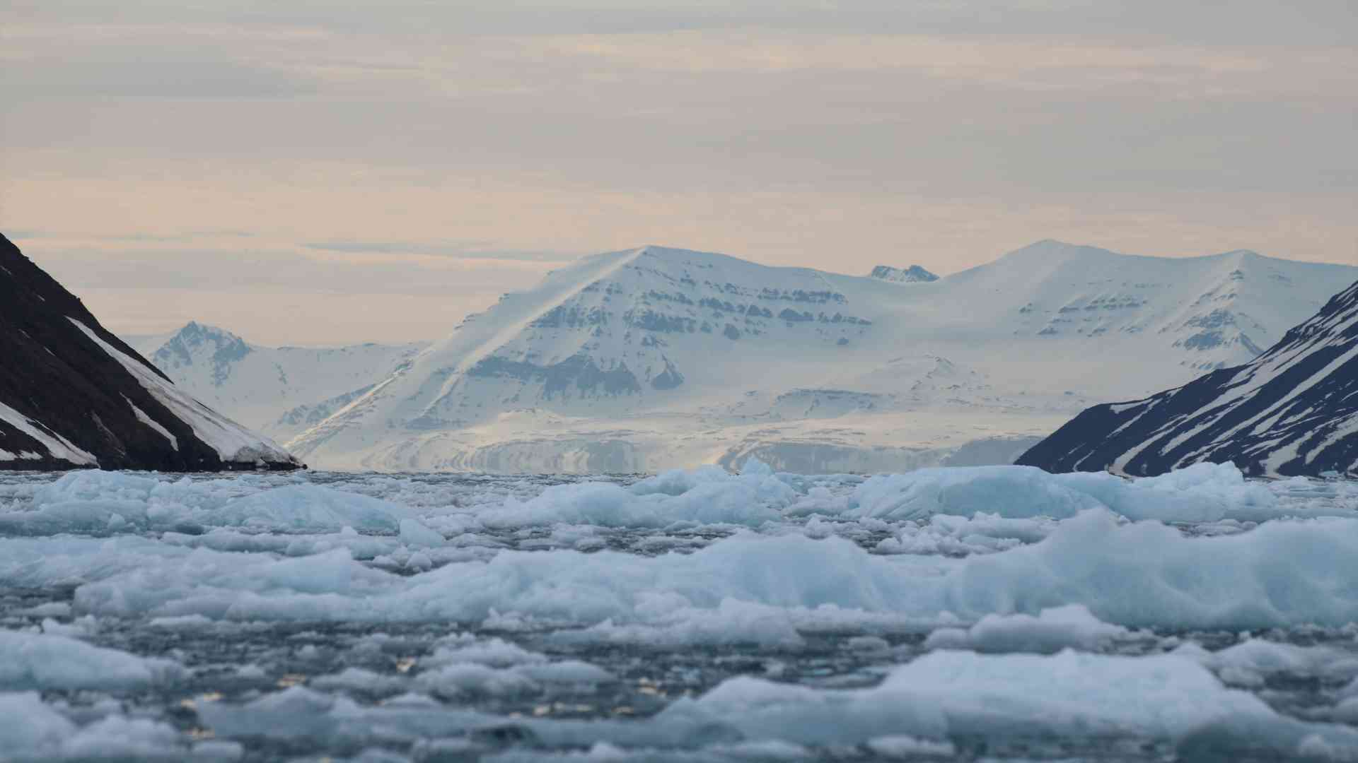 Arctic Zodiac Cruising