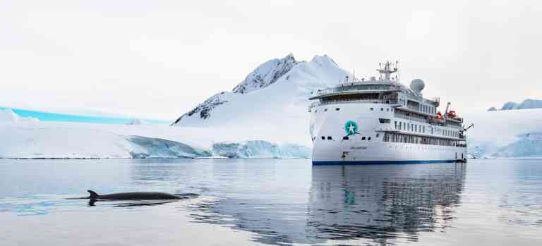 Spot whales and other wildlife from the ships, Antarctica by Aurora Expeditions
