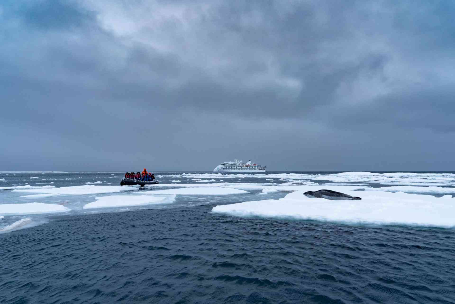 Passengers watch a curious leopard seal on a Zodiac cruise by Aurora Expeditions