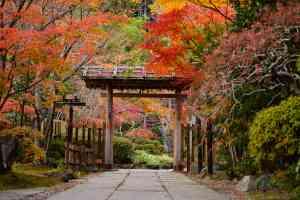 Entsuin Gate, Matsushima, Japan by 愛 半野/AdobeStock