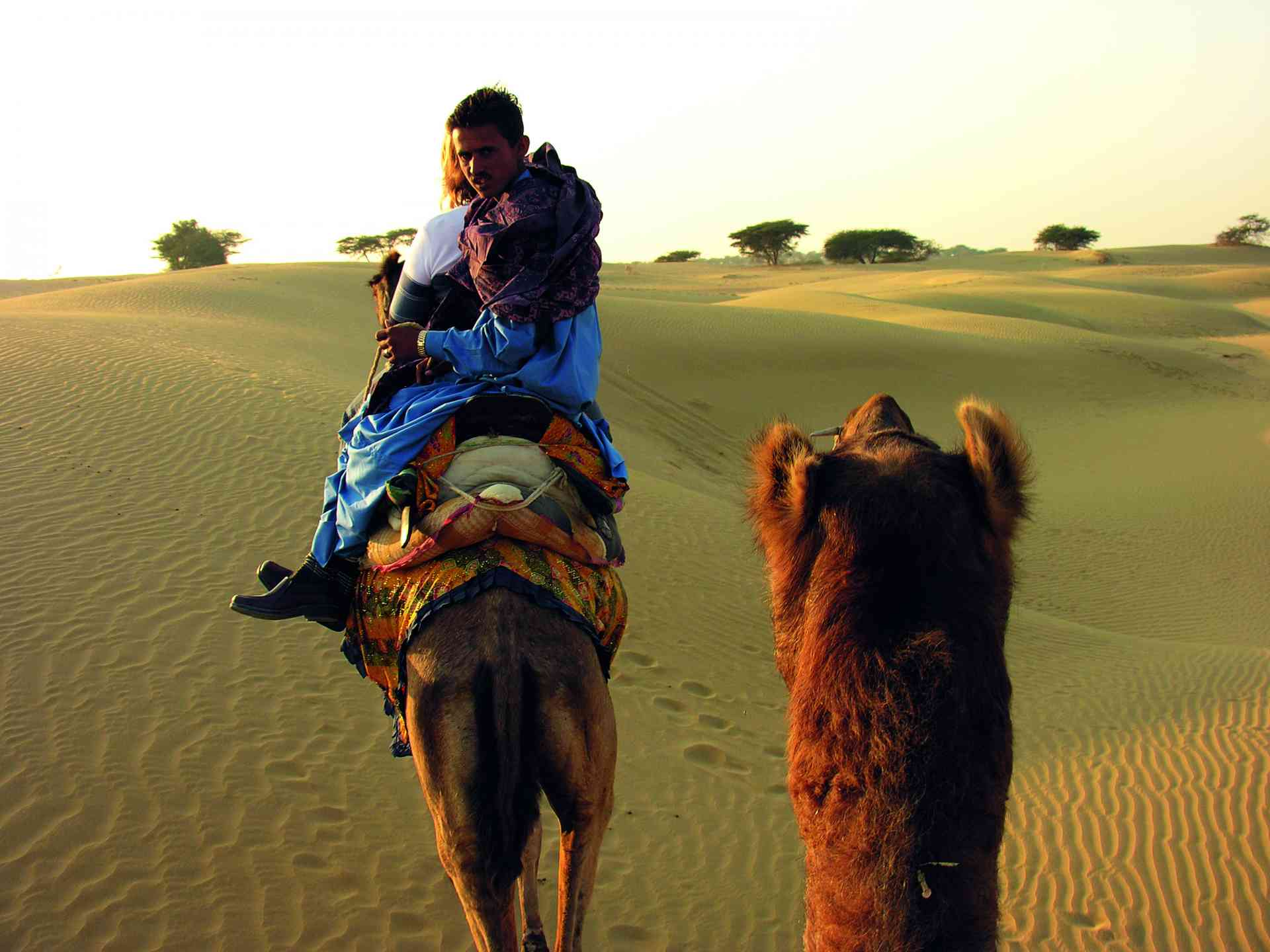 Camel Safari, Manvar Desert, India