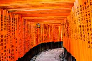 Fushimi Inari Shrine, Japan by Graham Meale