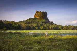 Lion Rock in Sigiriya, Sri Lanka by David Hein
