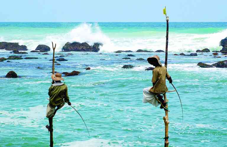 Stilt Fishermen, Galle, Sri Lanka by Roy Bisson