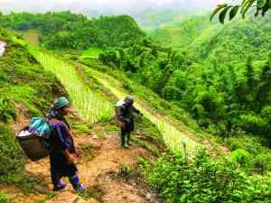 Sapa Hills, Vietnam by Zoe Francis