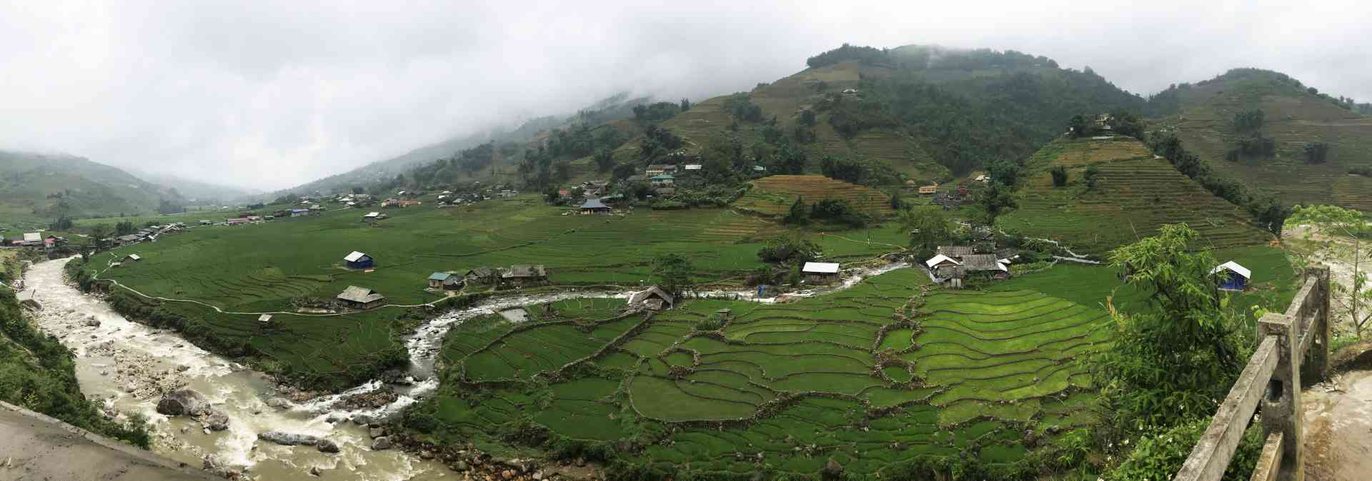 Rice fields of Hmong Village, Sapa by Zoe Francis