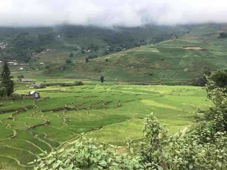 Rice Paddies in Sapa, Vietnam by Zoe Francis