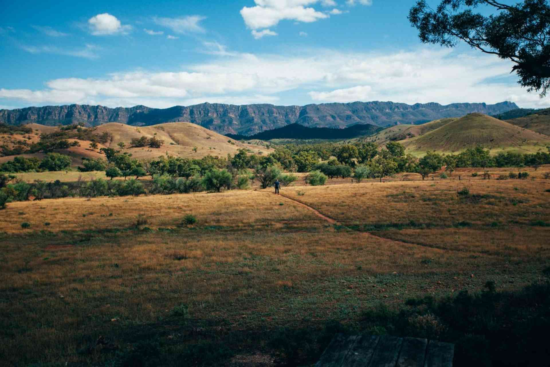 Flinders Ranges, South Australia, Australia
