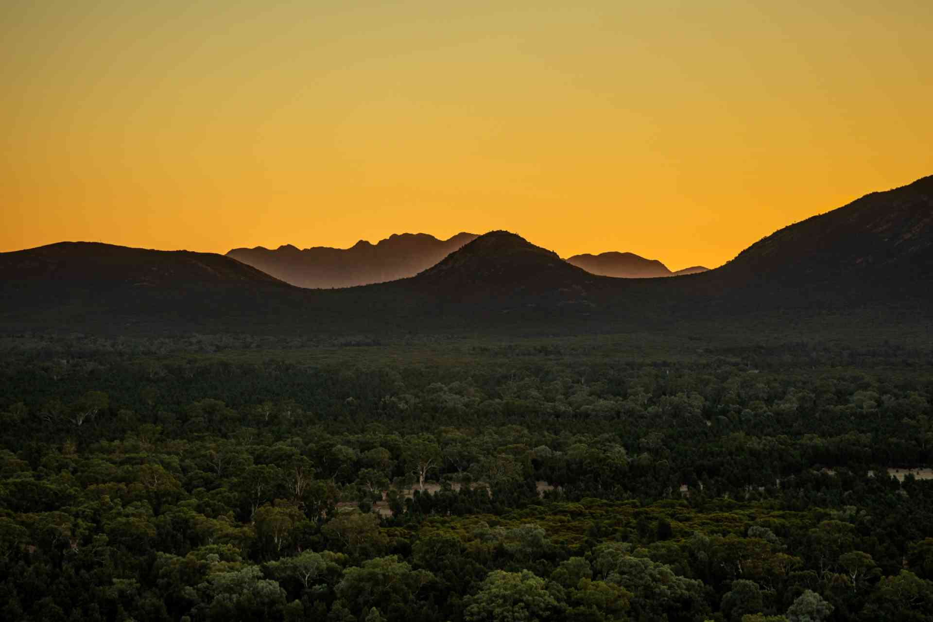 Wilpena Pound, Flinders Ranges by Aaron Citti, South Australian Tourism Commission