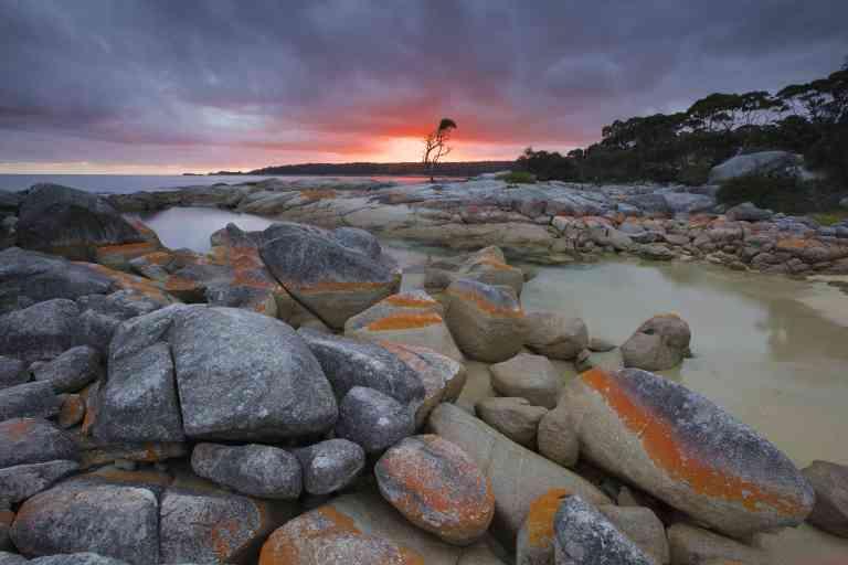 Binalong Bay, Tasmania by Pete Harmsen