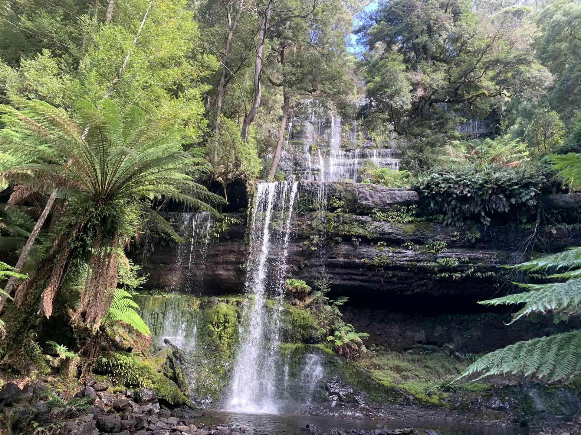 Russell Falls, Tasmania by Zoe Francis