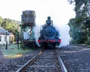 Rack & Gorge Train, Tasmania by Kerrie Cripps