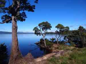Sarah Island, Tasmania by Honi Gibson