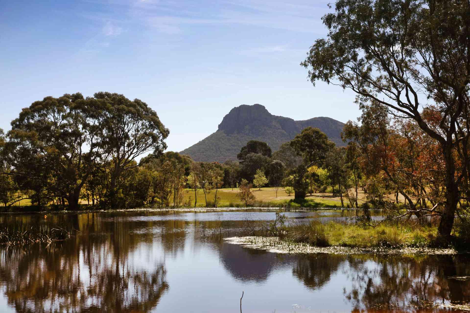 Dunkeld Arboretum, Victoria by Visit Victoria