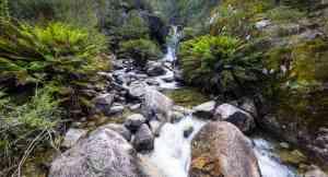 Ladies Bath Falls, Mount Buffalo National Park, Victoria by Visit Victoria