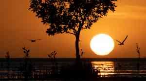 Sunset in the Kimberley, Western Australia by Scott Portelli (Aurora Expeditions)