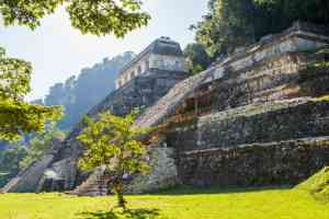 Palenque, Mexico by Graham Meale