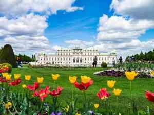 Belvedere Palace, Vienna, Austria by Dennis Bunnik
