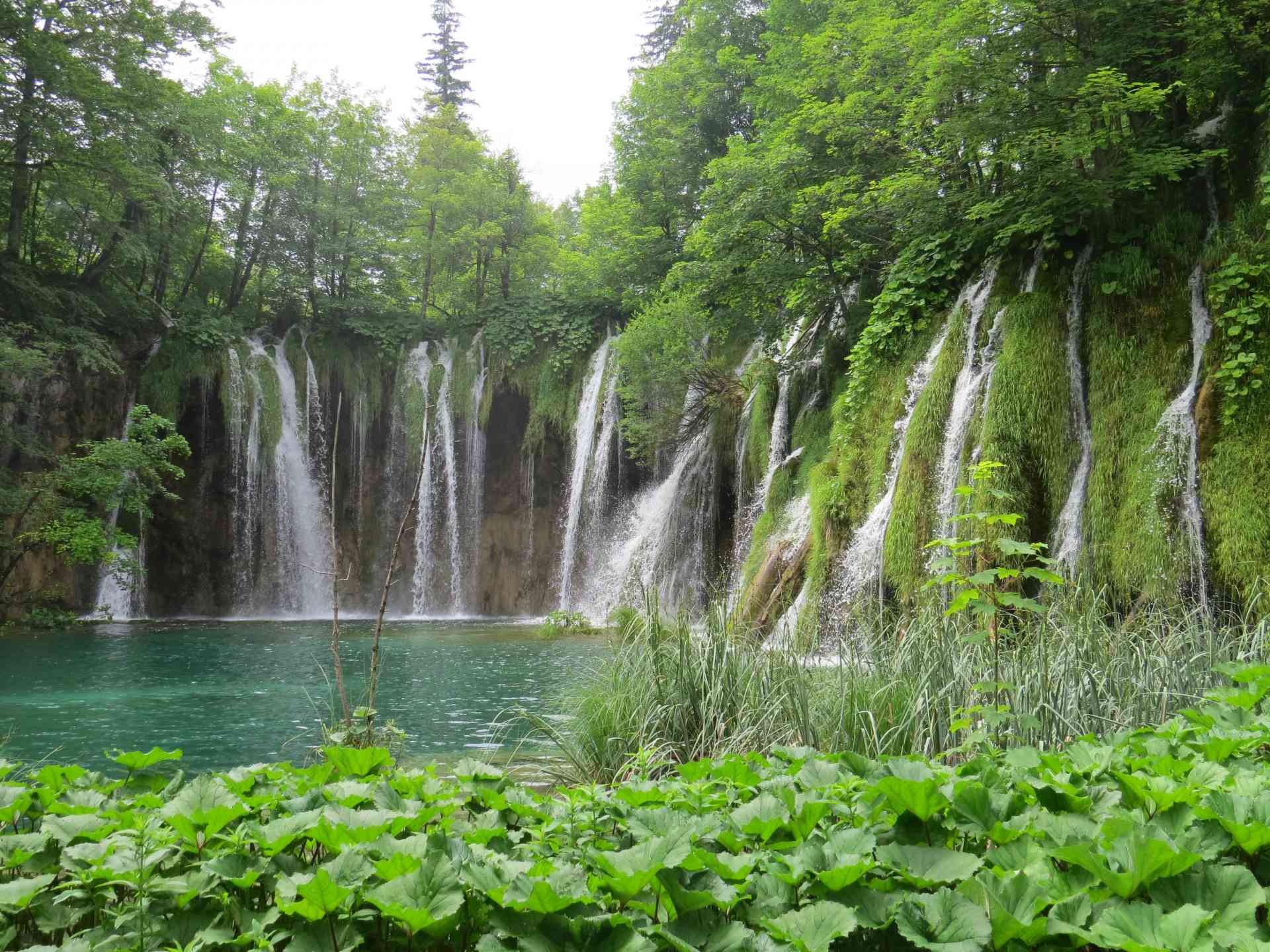 Plitvice Lakes, Croatia by Adam Dickson