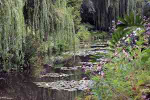 Monet's Garden, Giverny, France by Emily Fraser