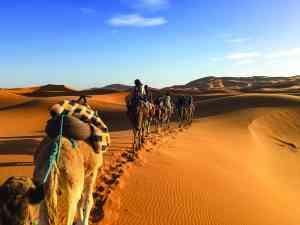 Merzouga Desert, Morocco by Rachel Footner
