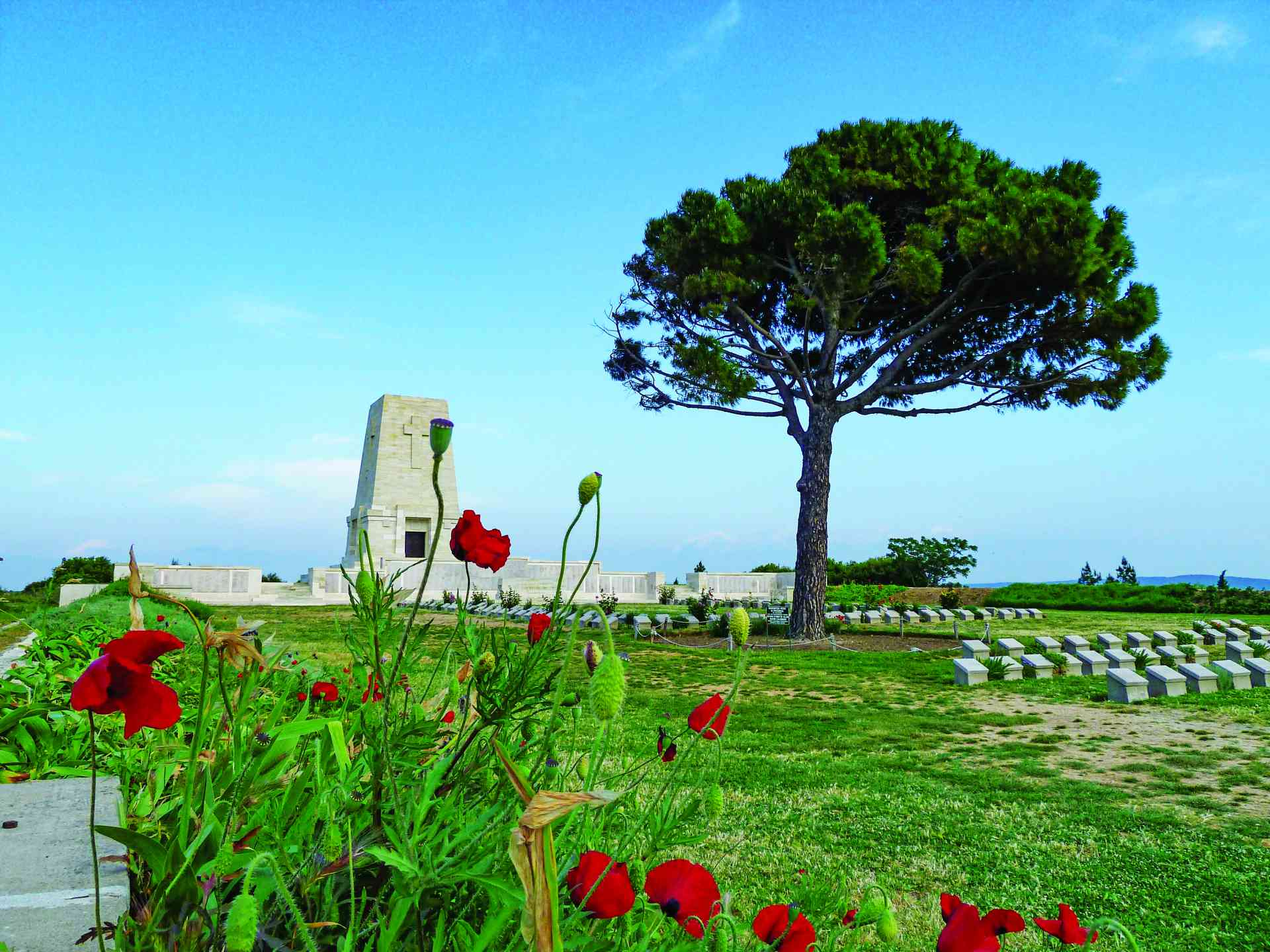 Lone Pine Memorial in Gallipoli, Turkey by Dennis Bunnik