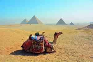 Giza Plateau, Egypt by Pamela Frisari