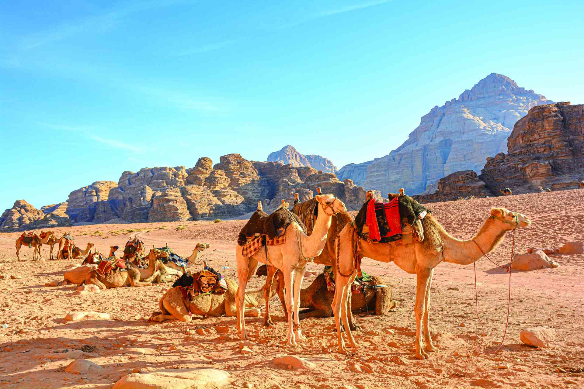 Wadi Rum, Jordan by Pamela Frisari