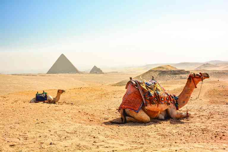 The Giza Plateau, Egypt by Pamela Frisari