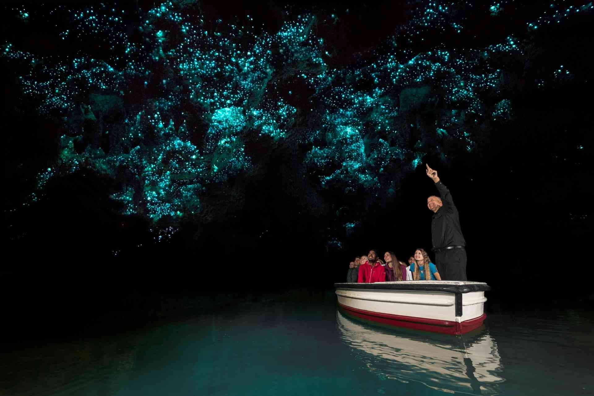 Waitomo Caves, New Zealand by Corin Walker Bain