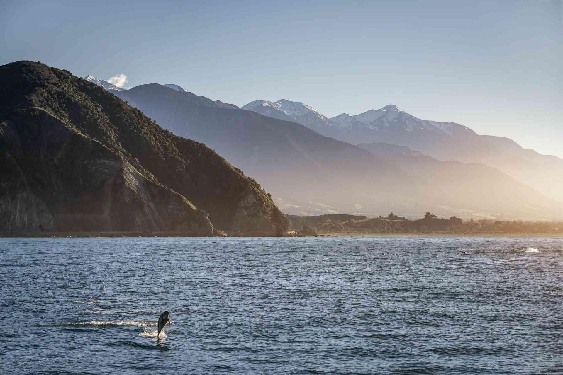 Kaikoura, New Zealand by Tourism New Zealand