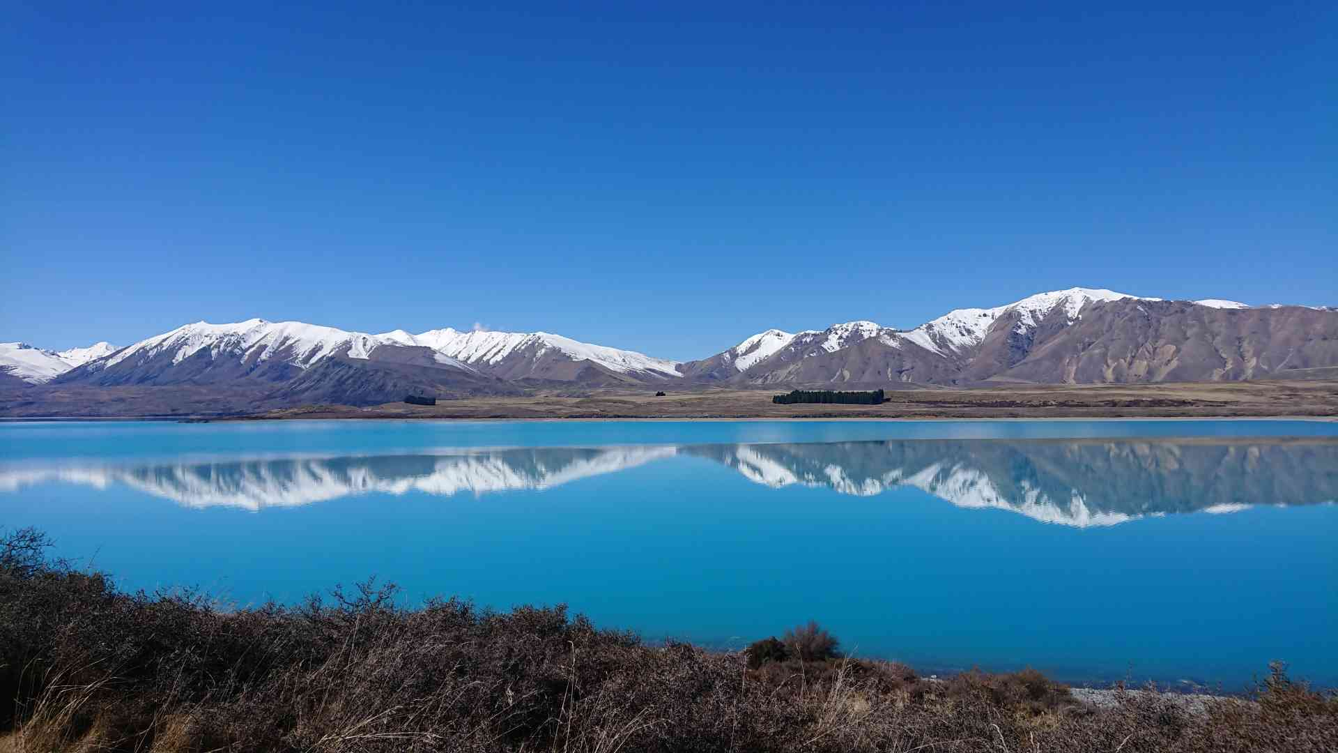 Lake Tekapo, New Zealand by Priscilla Aster