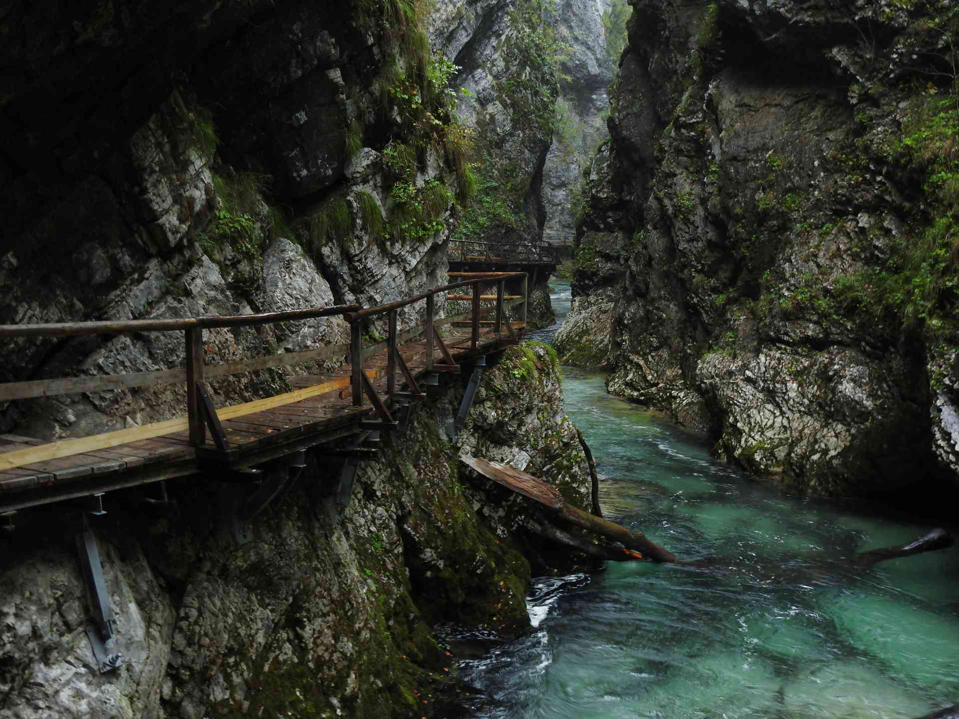 Congratulations to Ian M, our January 2020 winner, for this spectacular shot of the impressive Vintar Gorge in Slovenia on our Jewels of Dalmatia tour!