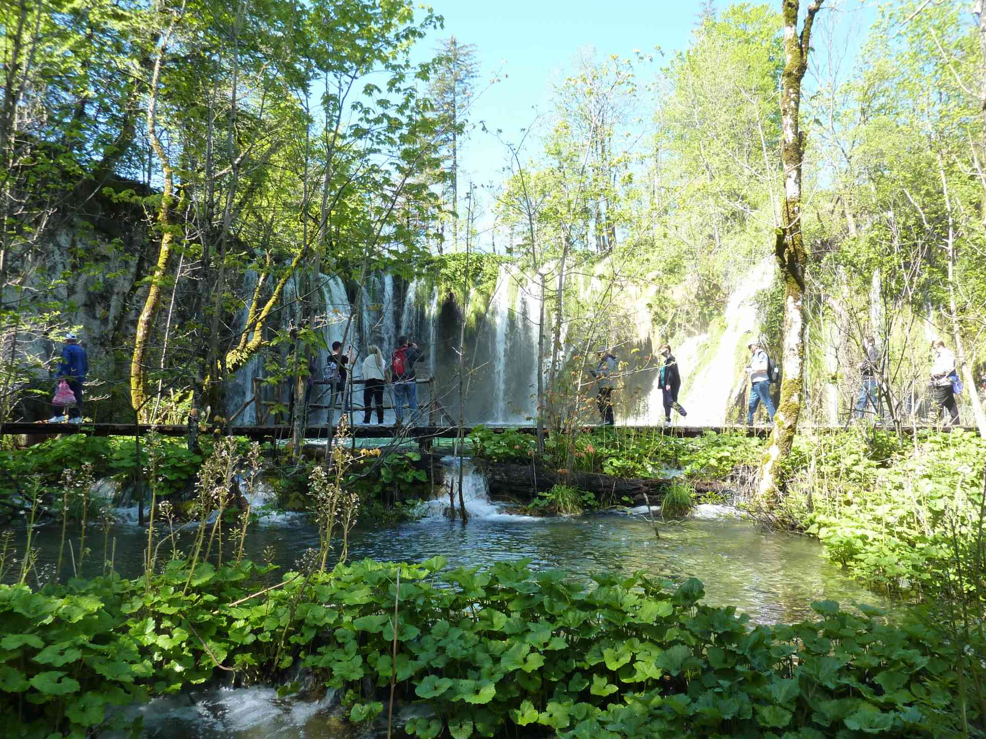 Congratulations to our July 2019 photo competition winner John W for this awesome shot of the stunning Plitvice Lakes on our Jewels of Dalmatia tour!