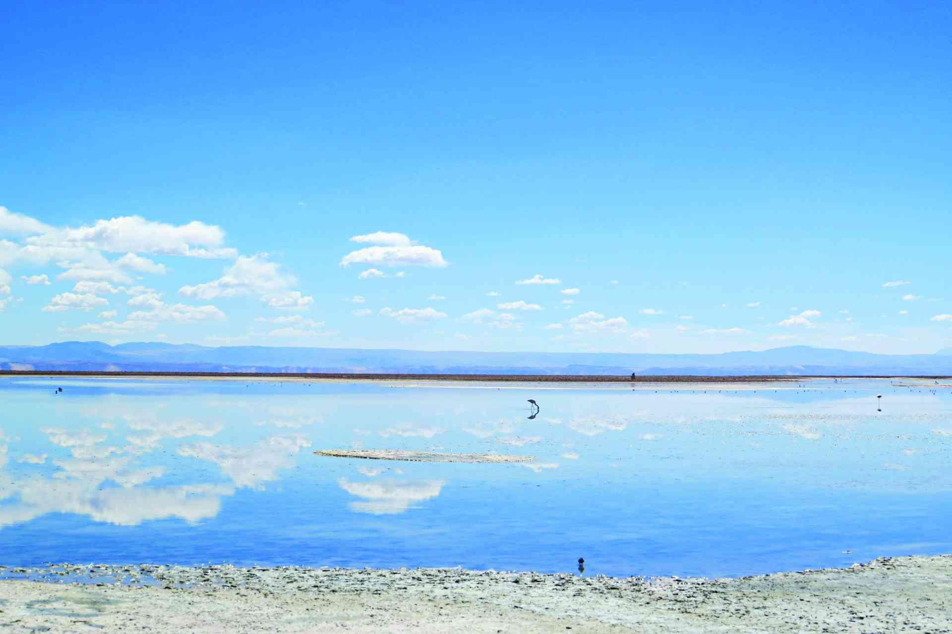 Salar de Atacama, Chile by Marion Bunnik