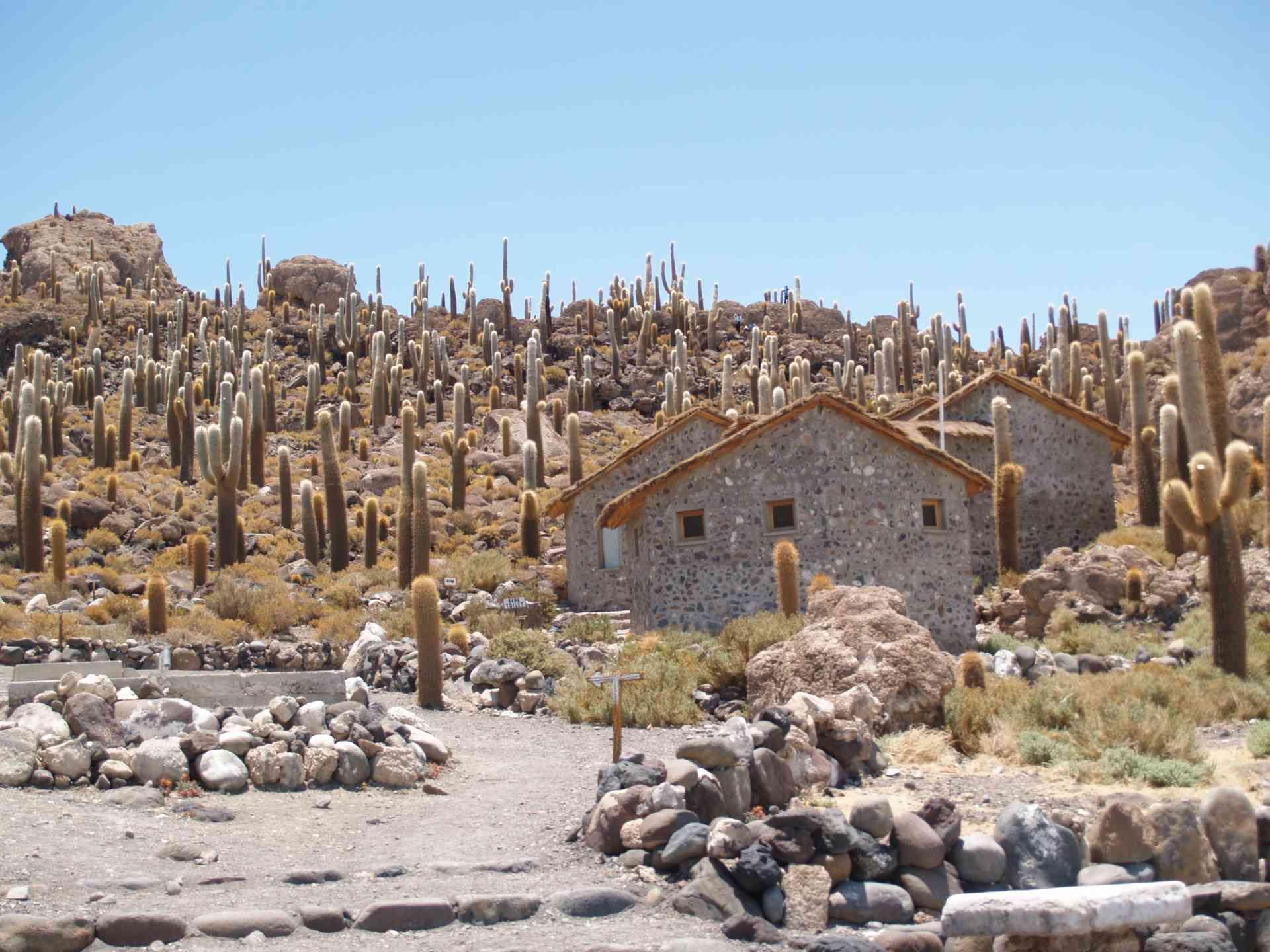 Uyuni, Bolivia by Annelieke Huijgens