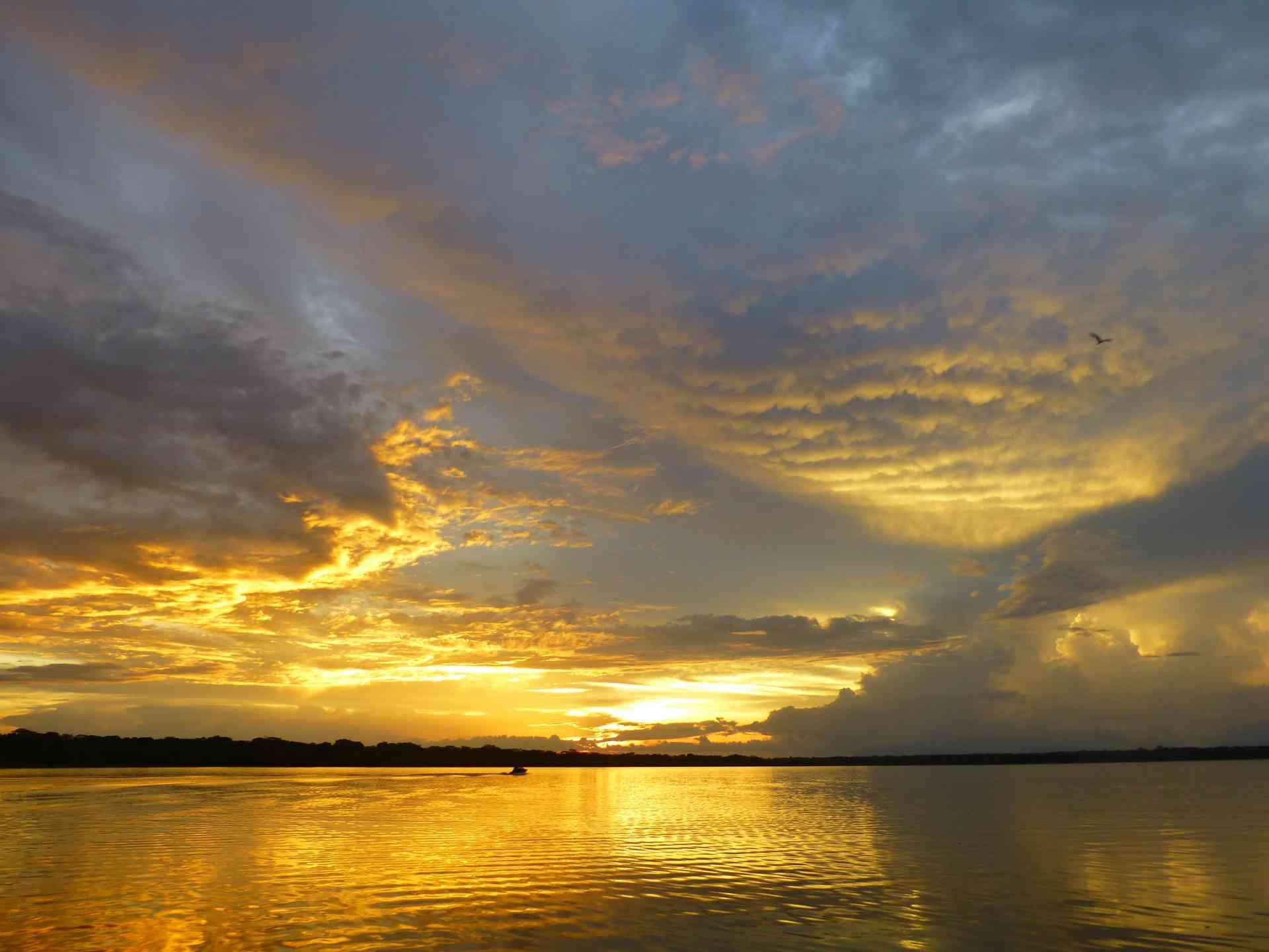 Amazon Sunset, Peru by Dennis Bunnik