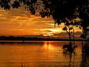 Amazon Sunset, Peru by Dennis Bunnik