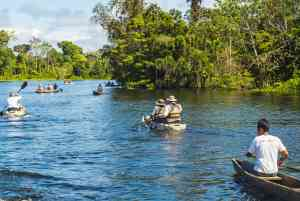 Amazon canoeing, Peru by Aqua Expeditions