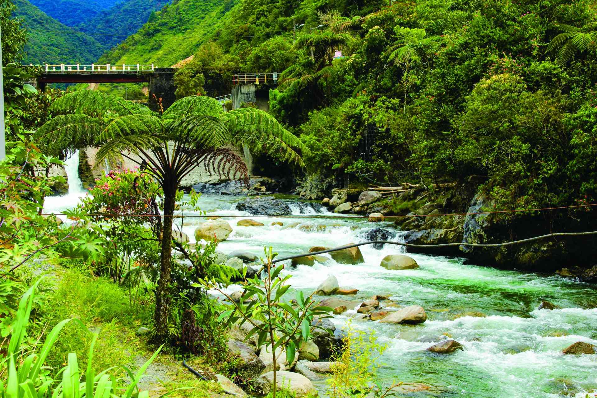 Baños, Ecuador by David Hammett