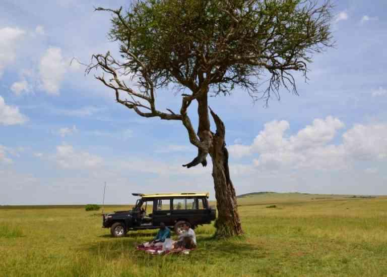 Maasai Mara Picnic by Annelieke Huijgens