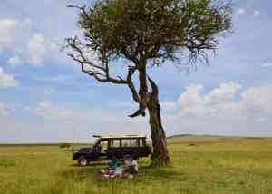 Kenya | 48 hours in the Maasai Mara
