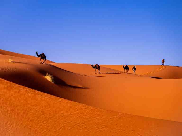 Sahara Desert, Morocco