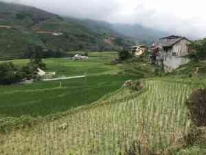Sapa - A breath of fresh air
